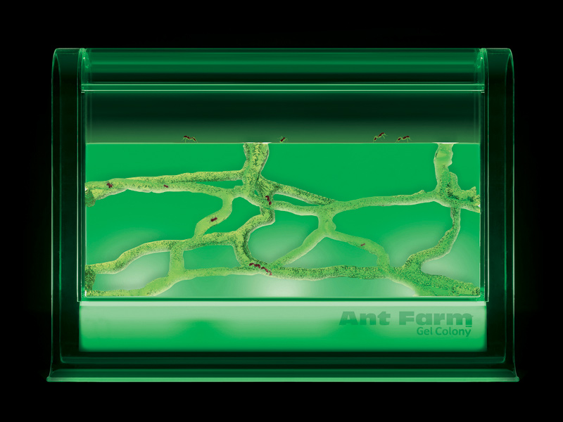 Uncle Milton S Toys Ant Farm 174 Ant Farm 174 Light Up Gel